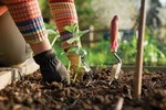 Gardening, 25 guides!